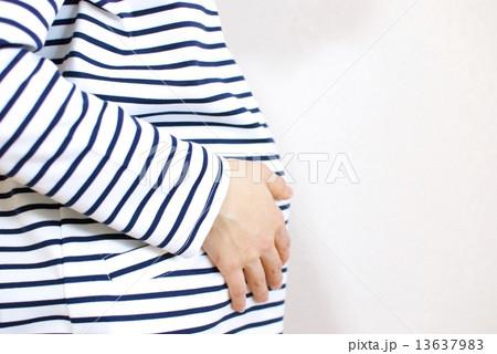 妊娠8ヶ月の女性のお腹 13637983