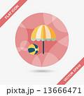 貝 貝がら 貝殻のイラスト 13666471