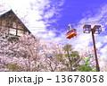 須磨浦公園 ロープウェイ 桜の写真 13678058