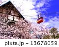 須磨浦公園 ロープウェイ 桜の写真 13678059
