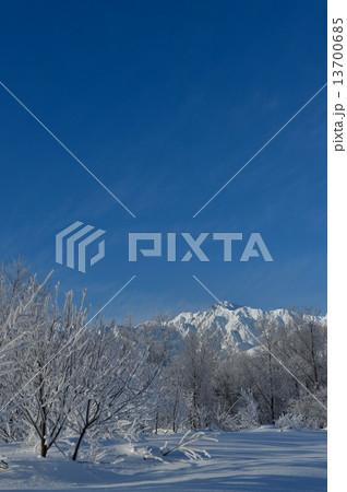 信州白馬冬季節観光素材イメージ 13700685