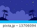 南国の星空 13706094