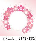 フレーム ベクター 桜のイラスト 13714562