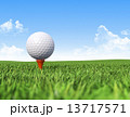 Golf ball on tee in grass 13717571
