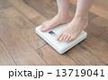 体重 13719041