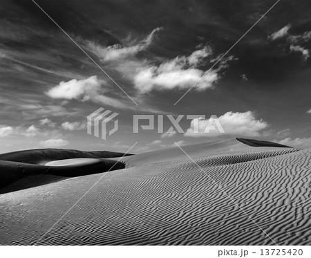 Dunes of Thar Desert, Rajasthan, India 13725420