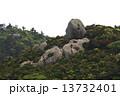 山頂の巨石 (屋久島三岳) 13732401