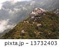 山頂の巨石 (屋久島三岳) 13732403