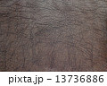 テクスチャー テクスチャ 褐色の写真 13736886