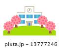 学校と桜 13777246