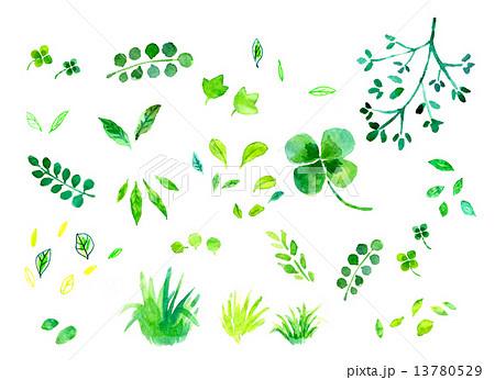緑のイラスト素材 13780529 Pixta