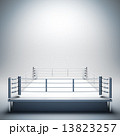 Empty white boxing ring. 13823257