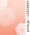 牡丹 背景 和のイラスト 13829693