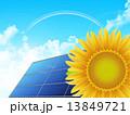 ソーラーパネル 向日葵 虹のイラスト 13849721