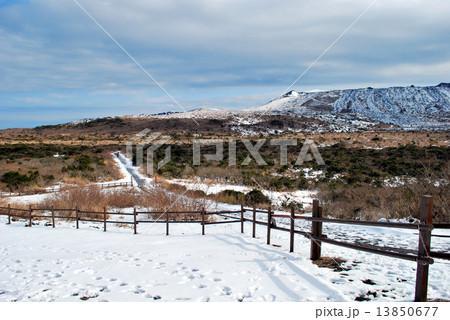 雪の三原山登山道 13850677