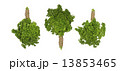 Photo of three bunches of parsley isolated on white background 13853465