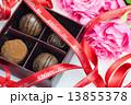 バレンタインデー 13855378