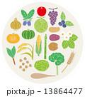 農産物 ベクター 食材のイラスト 13864477