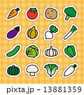 野菜アイコン 13881359