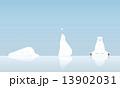 シロクマと雪 13902031