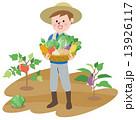 収穫 13926117