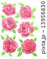手描き 水彩 水彩画のイラスト 13956830