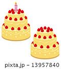 ケーキの素材 13957840