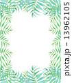 椰子の葉 椰子 ヤシ 緑の葉 熱帯 トロピカル 暑い ハワイ 沖縄 バリ バリ島 グアム リゾート 風 爽やか 自然 空 旅行 夏 木 夏休み 休暇 熱帯性 パーム 背景 フレーム 枠 壁紙 バックグ 13962105