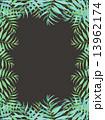 椰子の葉 椰子 ヤシ 緑の葉 熱帯 トロピカル 暑い ハワイ 沖縄 バリ バリ島 グアム リゾート 風 爽やか 自然 空 旅行 夏 木 夏休み 休暇 熱帯性 パーム 背景 シルエット 緑 フレーム 枠 13962174