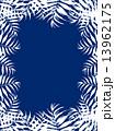 椰子の葉 椰子 ヤシ 緑の葉 熱帯 トロピカル 暑い ハワイ 沖縄 バリ バリ島 グアム リゾート 風 爽やか 自然 空 旅行 夏 木 夏休み 休暇 熱帯性 パーム 背景 シルエット 青 フレーム 枠 13962175