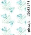 椰子の葉 椰子 ヤシ 緑の葉 熱帯 トロピカル 暑い ハワイ 沖縄 バリ バリ島 グアム リゾート 風 爽やか 自然 空 旅行 夏 木 夏休み 休暇 熱帯性 パーム 背景 青 壁紙 バックグラウンド  13962176