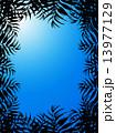 椰子の葉 椰子 青空 太陽 日光 陽射し ヤシ 緑の葉 青 熱帯 トロピカル 暑い ハワイ 沖縄 バリ バリ島 グアム リゾート 風 朝日 日の出 自然 空 旅行 夏 エステ 夏休み 休暇 熱帯性 パ 13977129