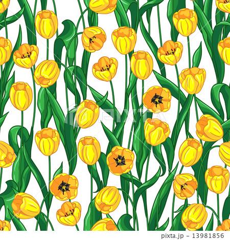 Yellow tulips patternのイラスト素材 [13981856] - PIXTA
