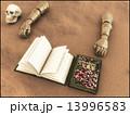 魔導書 13996583