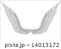 翼 スケッチ 写生のイラスト 14013172