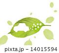 エコカー 葉 自動車のイラスト 14015594