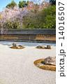 龍安寺方丈庭園、白砂 14016507