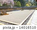 龍安寺方丈庭園、全貌 14016510