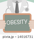 Medical Board Obesity 14016731