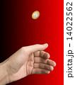 コイン 手 選択の写真 14022562