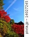 京都 東福寺の紅葉 14027245