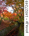 京都 東福寺の紅葉 14027249