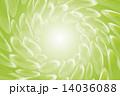 ベクター 泡 シャボンのイラスト 14036088
