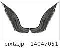 翼 スケッチ 写生のイラスト 14047051