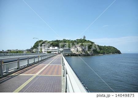 江の島 弁天橋 14049875