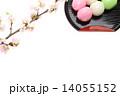 団子 三色ダンゴ 桜の写真 14055152