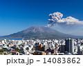 噴煙を上げる桜島 14083862