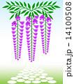 藤の花 花房 花のイラスト 14100508