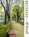 公園 新緑 ベンチの写真 14101138