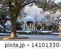 広島平和公園 平和公園 広島の写真 14101330